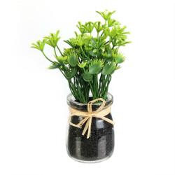Dekoracja zioła w słoiku Pietruszka